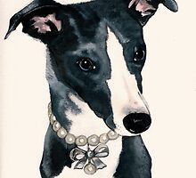 Blue Whippet by Fotasia