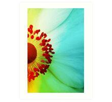 Colour Wheel Art Print