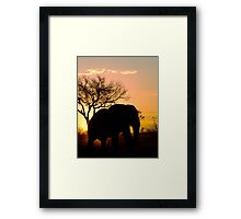 Sunset Stroll Framed Print