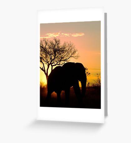 Sunset Stroll Greeting Card