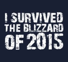 Original 'I survived the Blizzard of 2015' T-shirts, Hoodies, Accessories and Gifts by Albany Retro