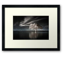 Tree in Water Framed Print