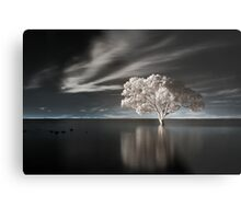 Tree in Water Metal Print
