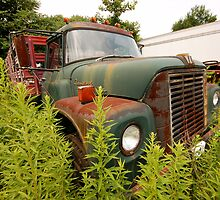 rusting in the weeds by Bill Manocchio