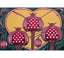 Pomegranates Photographic Print