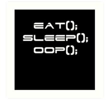 Eat, Sleep, OOP Art Print