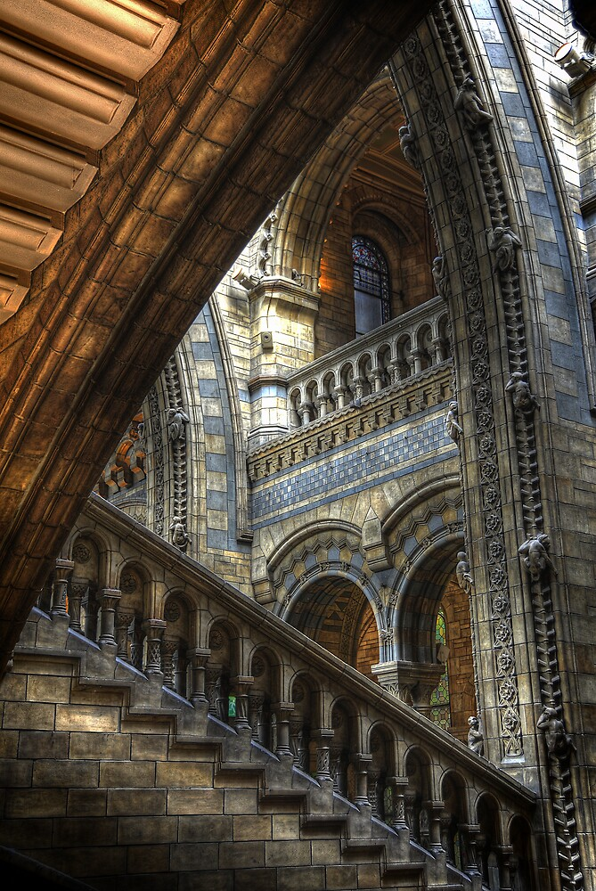 Natural History Museum, London 1 by DocG