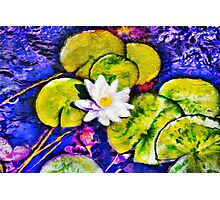 A colorful Pond Photographic Print