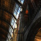 Natural History Museum, London 2 by DocG