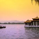 Chinese boat on West Lake, in Hangzhou China by Patrick Czaplewski