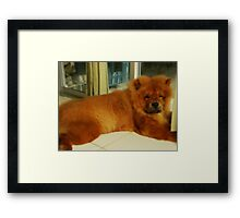 Udon,The Love Of My Life Framed Print