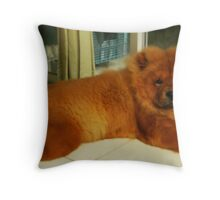 Udon,The Love Of My Life Throw Pillow