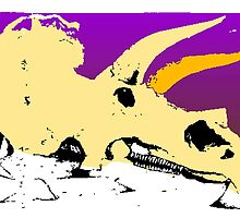 Triceratops Skull by kwg2200