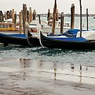Much water in Venice by julie08