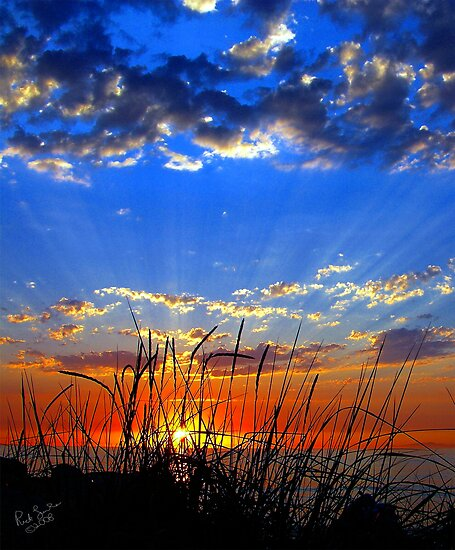 Dog Days Sunset Eight by Rick Lawler