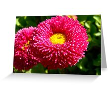 Lovely small flowers 4 Greeting Card