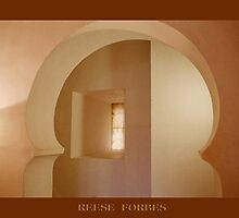 Poster Of Aljaferia Hidden Passage by Reese Forbes