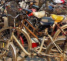 Shanghai Bicycles by Patrick Czaplewski