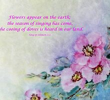 Song of Solomon 2:12 Card by Susan S. Kline