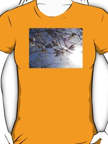 cherry blossoms in the sun T-Shirt