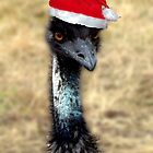 Emu - Christmas Card - Busselton W.A. by Coralie Plozza