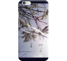 cherry blossoms in the sun iPhone Case/Skin