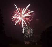 Fireworks 5 by Christopher L. Moore