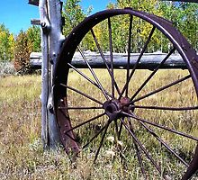The Old Wagon Wheel Gate by jansnow