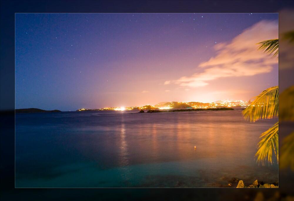 Island Night Life by L M