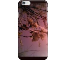 cherry blossoms in the sun, red tint iPhone Case/Skin