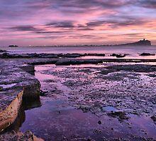 Nobbys Beach NSW by monkeyfoto
