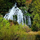 Thousand Falls...Hagerman, Idaho by trueblvr
