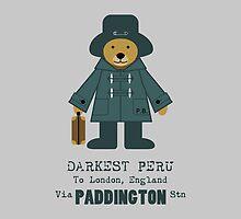 Paddington Bear 5 by povalyaeva