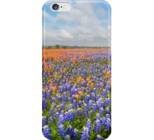 Bluebonnets and Paintbrush near Whitehall, Texas 2 iPhone Case/Skin
