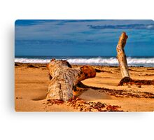 """Reaching Out"" Canvas Print"