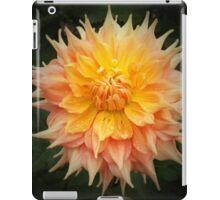 Beautiful Orange Dahlia Macro iPad Case/Skin