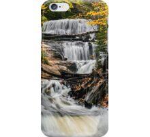 Sable Falls Cascade iPhone Case/Skin