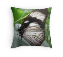 Natures Little Wonders Throw Pillow