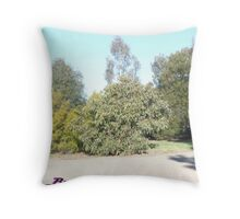 Trees Galore!!!!!!!!! Throw Pillow