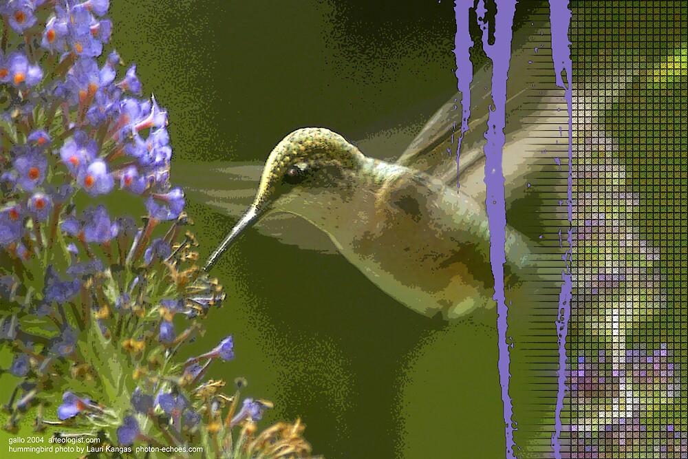 The Humming Bird by arteology