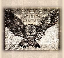 Owl Spread Your Wings - light by sonanonymous