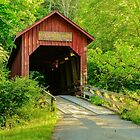 Bean Blossom Covered Bridge by Mary Carol Story