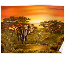 Elephant at Water Hole Poster