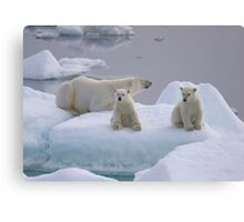 Polar Bear Family II Canvas Print