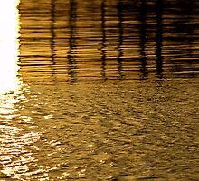 Liquid gold by Paolo57