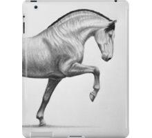 """Mount of Kings"" iPad Case/Skin"