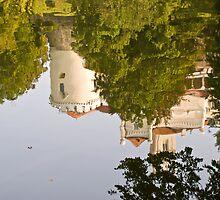 Reflection of reality or ...... by Željko Malagurski