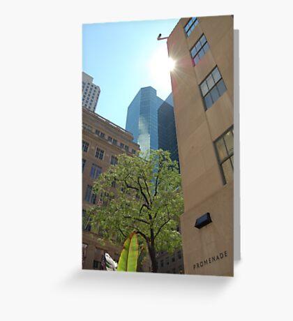Light thru 5th Avenue Greeting Card