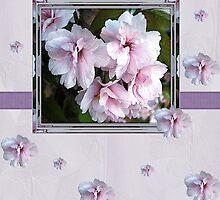 pink flowers birthday card by cynthiab