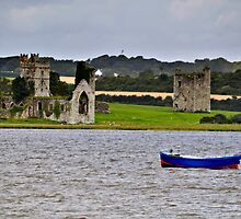 ruined abbey at Wellingtonbridge, County Wexford, Ireland by Andrew Jones